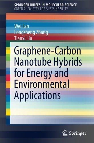Graphene-Carbon Nanotube Hybrids for Energy and Environmental Applications (SpringerBriefs in Molecular Science)