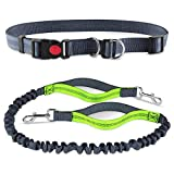1Stage Hands Free Dog Lead, Dual Handle Running Lead with Shock Absorbing and Extendible Bungee, Adjustable Waist Belt for Running Walking Small, Medium or Large Dogs