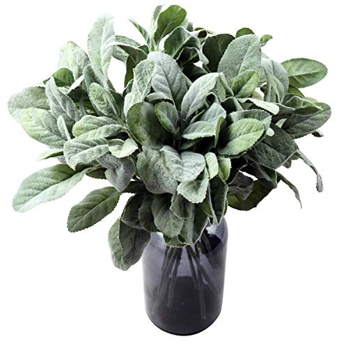 - SHACOS 12 PCS Artificial Flocked Lambs Ear Leaf Spray Stems Picks Fake Lambs Ear Greenery Bouquets for Home Wedding DIY Craft Floral Arrangement (12 PCS, Green)