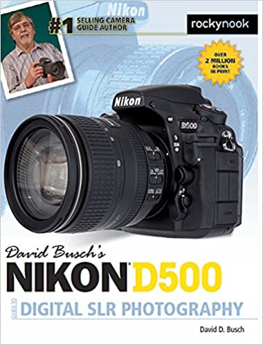 David Busch S Nikon D500 Guide To Digital Photography por David Busch epub