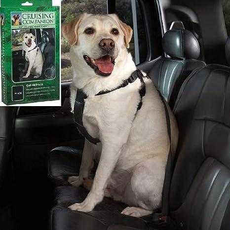 Compañero de Cruising perro coche Arnés de nailon, tamaño grande ...