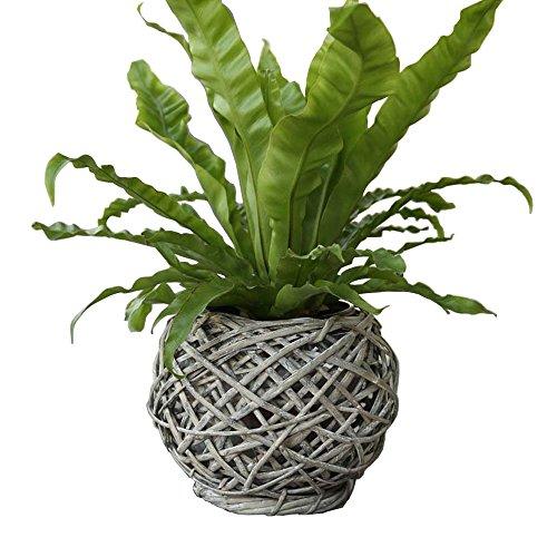 Eco-Friendly Rustic Artistic Wicker Woven Tabletop Flower Pot Basket Light Grey