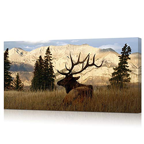 VVOVV Wall Decor Wildlife Animal Painting Deer Elk Wall Art Canvas Prints Autumn Forest Landscape Picture Stretched Framed Modern Home Decor for Bedroom Ready to Hang - 24x48 inches