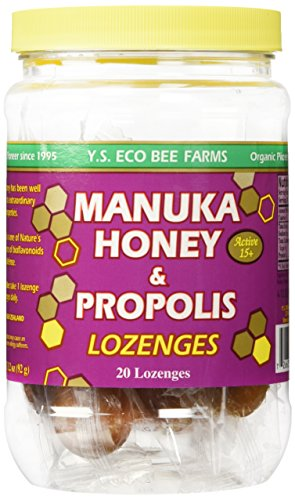 Y.S. Eco Bee Farms Manuka Honey & Propolis Active 15+ Lozenges 20 Lozenges Defense Lozenges Vitamins