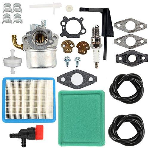 Buckbock 798653 Carburetor Carb with Air Fuel Filter Repair Kit for Briggs & Stratton 591299 698474 791991 698810 698857 698478 694174 690046 693751 6.5 HP 120202 120212 120232 120252 Lawn Mower