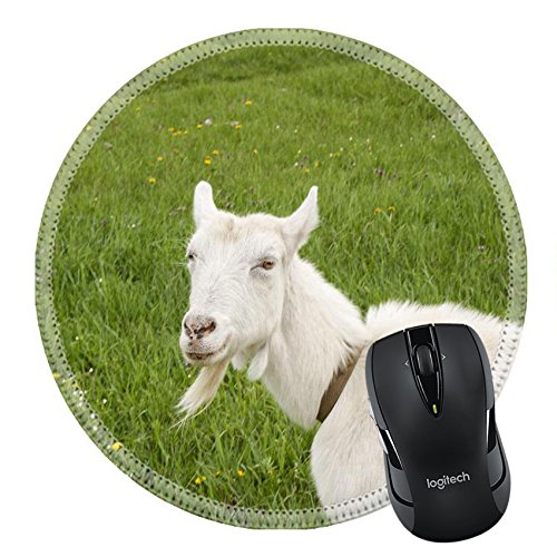 MSD Mousepad Round Mouse Pad/Mat 20140685 Smiling female goat on blossom - For Round Goatee Face