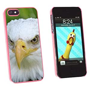 Graphics and More Bald Eagle Staring - Snap-On Hard Protective Case for Apple iPhone 5/5s - Non-Retail Packaging - Pink
