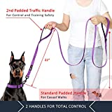 Pioneer Petcore Dog Leash 6ft Long,Traffic Padded