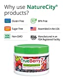TrueBerry7 Sugar Free Drink Mix Contains 7 Super Fruits Blueberry Capros Alma Maqui Berry Tart Cherry Acai Berry Pomegranate Grape Seed and Fibersol2 30 servings Discount