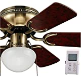 OCEAN LAMP OL-TRADITIONAL CEILING FAN WITH REVERSIBLE BLADES AND LIGHT Review