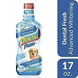 SynergyLabs Dental Fresh Advanced Whitening; 17 oz