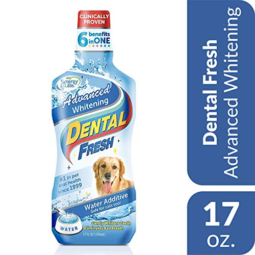Dental Fresh Water Additive for Pets – Clinically Proven, Simply Add to Pet's Water Bowl to Whiten Teeth