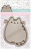 Pusheen Mirror