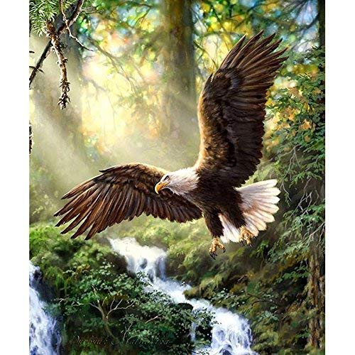 zhui star DIY Round Diamond Painting Kits for Adults Full Drill Cross Stitch Waterfall and Strong Eagle Home Decoration 40x30CM