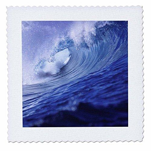 3dRose qs_84862_4 Fiji Islands, Tavarua, Cloudbreak, Surfing waves - OC01 RER0000 - Ric Ergenbright - Quilt Square, 12 by 12-Inch - Fiji Comforter