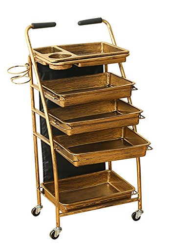5 Tiers Salon Trolley Multifunctional Tray Hair Storage Hairdressing Cart Beauty Spa Makeup Cart Gold Drawers by SalonTrolley