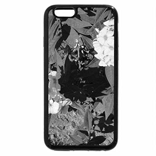 iPhone 6S Plus Case, iPhone 6 Plus Case (Black & White) - A shiny day at Edmonton garden 21