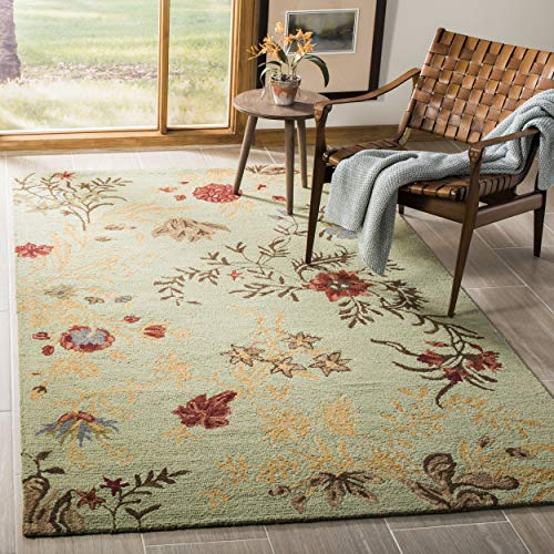 Safavieh Blossom Collection BLM919A Handmade Light Green and Multi Premium Wool Area Rug (5' x 8')