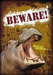 Pocket Worlds Non-fiction Year 3: Beware!