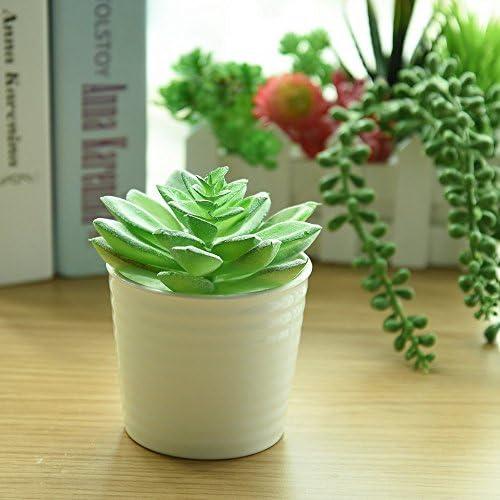 KUUQA 16 piezas de plantas artificiales carnosas mixtas, tallos de ...