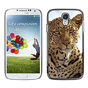 Hot Style Cell Phone PC Hard Case Cover // M00000605 Leopards Pattern // Samsung Galaxy S4 i9500