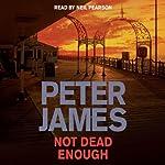 Not Dead Enough | Peter James