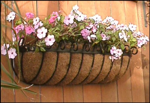 Standard Scroll Hay Rack Window Basket w/ Coco Liner - 60 Inch by Windowbox