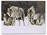 Light Up Wolf Picture - Wolves LED Lighted Canvas Print - Wolf Pack in a Winter Scenn - Wolf Home Decor - Grey Wolves in a Snowy Forest Scene - 16x12 Inch
