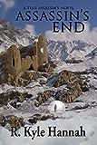 Assassin's End (Time Assassins Book 3)