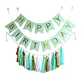 Ipalmay Happy Birthday Bunting Banner Pastel with 15 Pieces Tissue Paper Tassels Garland DIY Kit Mint