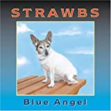 Blue Angel by Strawbs