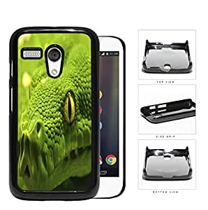 Green Tree Python Snake Eye And Scales Close-up Hard Plastic Snap On Cell Phone Case Motorola Moto G