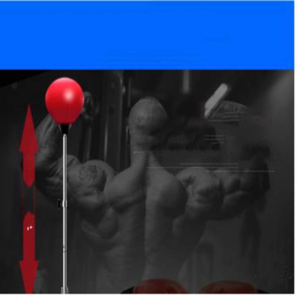 construcci/ón de Fuerza y Resistencia para ni/ños Mejorar Punch Focus Deporte Ejercicio Pr/áctica Fitness Trainer Bomba DGFTC-2 Bola de Boxeo de Herramientas tecnol/ógicas con Guantes