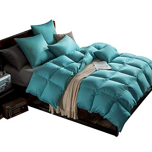 WarmKiss Premium Home Goose Down Comforter King 55oz Fill Weight 300TC 600 Fill Power Duvet Insert Soft Down Proof Shell Hypoallergenic for All Season Turquoise Blue (Twin)