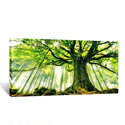 Kreative Arts Canvas Large Art Print Spring Forest Nature Green Big Tree Wall Art Photo Printed on Canvas Framed Artwork for Office Wall Decoration Ready to Hang 20x40inch (Pictures Of Trees)