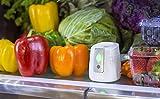 GreenTech Environmental pureAir Fridge Food Shelf