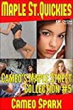 Book Cover for Cameo's Maple Street Collection #5