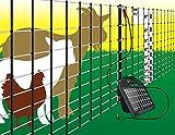 Powerfields P-89-G Poultry Net, 42-Inch 165-Feet, Green