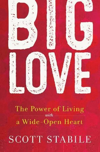 Read Online Big Love: The Power of Living with a Wide-Open Heart pdf