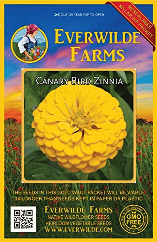 Everwilde Farms - 200 Canary Bird Zinnia Wildflower Seeds - Gold Vault Jumbo Seed -