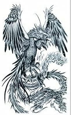 ggsell heftig Águila tatuaje temporal: Amazon.es: Belleza