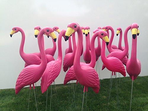 50 Premium Pink Flamingo Lawn Ornaments.