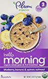 Plum Organics Stage 3 Hello Morning - Blueberry, Banana & Oatmeal - 3 oz