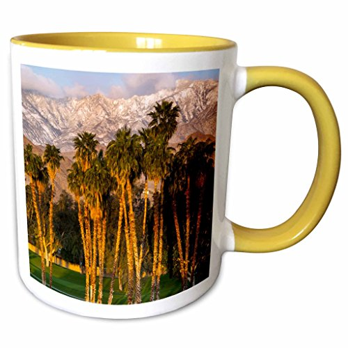 3dRose Danita Delimont - Richard Duval - Golf club - USA, California, Palm Springs. Desert Island Golf and Country Club. - 11oz Two-Tone Yellow Mug - Palm Spring California Outlet