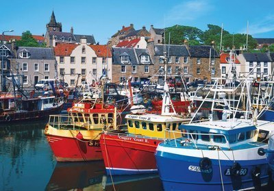 Colorluxe 500 Piece Puzzle - Fishing Boats, Pittenweem, Fife