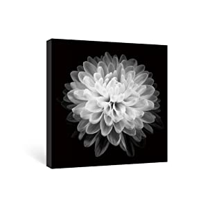 SUMGAR Black and White Wall Art for Bedroom Paintings on Canvas Framed Modern Macro Flower, 12x12in
