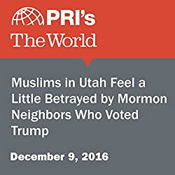 Muslims in Utah Feel a Little Betrayed by Mormon Neighbors Who Voted Trump