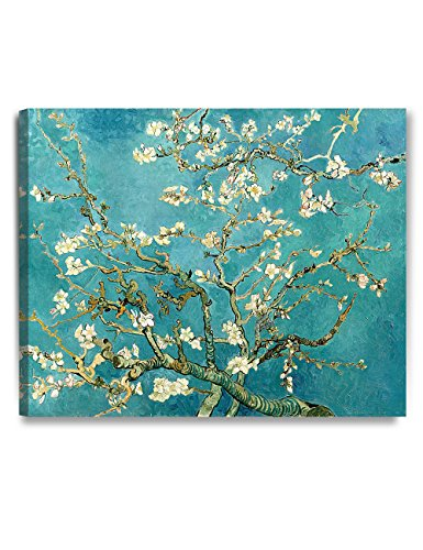 DecorArts Blossom Reproduction Stretched Wrapped