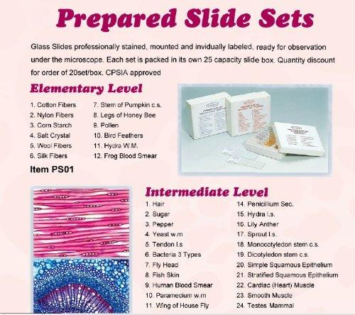 Elementary Level C and A Scientific Prepared Slide Sets C /& A Scientific PS01