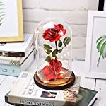 Sixpi-Beauty-and-Beast-Roses-Dream-Flower-Red-Silk-Rose-with-LED-Light-and-Fallen-Petals-on-a-Glass-Dome-Wooden-Base-Best-for-Weddings-Anniversaries-Best-Gift-for-Her-Big